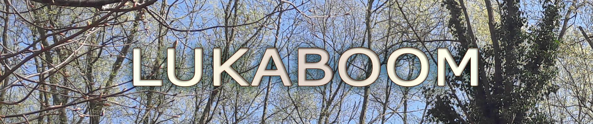 Opleidingen boomverzorger - Alchemie van bomenA